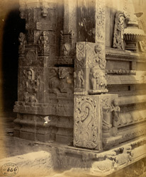 Close view of carvings on side entrance to Jalakanteshvara Temple, Vellore 2587